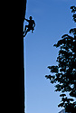 CC97065-80...WASHINGTON - Climber on Index Wall in the Cascade Mountains. (MR# D3)