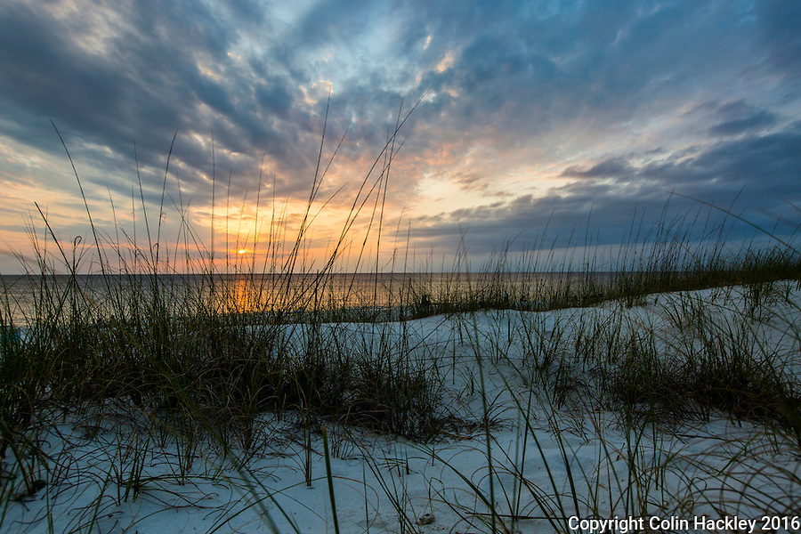CAPE SAN BLAS, FLA. 4/15/16-Sunset at T. H. Stone Memorial St. Joseph Peninsula State Park on Cape San Blas, Fla.<br /> <br /> COLIN HACKLEY PHOTO