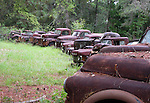 Rusted trucks along the roadside on US 319 in Wakulla County south of Crawfordville, Florida September 21, 2008.
