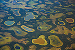 Wetlands of the Pantanal, Brazil