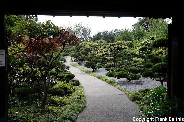 Decosee: Garden Pictures