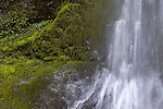 Waterfall in Olympic National Park, Washington, WA, USA