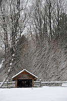 18 January 2008: Fresh snow covers a farm utility shed, wood fence, and deciduous trees at Shelburne Farms, in Shelburne, Vermont, USA...Mandatory Photo Credit: Ed Wolfstein Photo