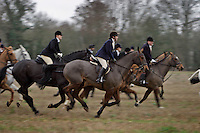 Gloucestershire, England, 06/12/2003..The Duke of Beaufort's Hunt fox-hunting in what may be the last legal hunting season in the UK, as Parliament moves to ban hunting with dogs.