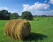 Rolled Hay bales, Lexington, Kentucky, USA.