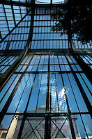 Plant History Glasshouse (formerly the Australian Glasshouse), 1830s, Charles Rohault de Fleury, Jardin des Plantes, Museum National d'Histoire Naturelle, Paris, France. View from below of the glass and metal structure with the foliage of a Podocarpus Elongata (SW Africa) on the top right of the picture and the New Caledonia Glasshouse in the background.