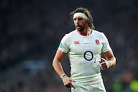 Tom Wood of England looks on during a break in play. Old Mutual Wealth Series International match between England and South Africa on November 12, 2016 at Twickenham Stadium in London, England. Photo by: Patrick Khachfe / Onside Images