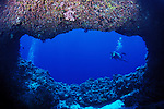 Divers swim past the entrance to an undersea tunnel , Republic of Palau, Micronesia.