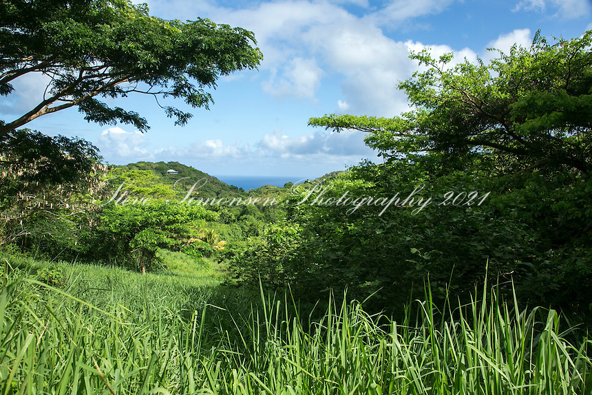 Ridge to Reef Farm<br />