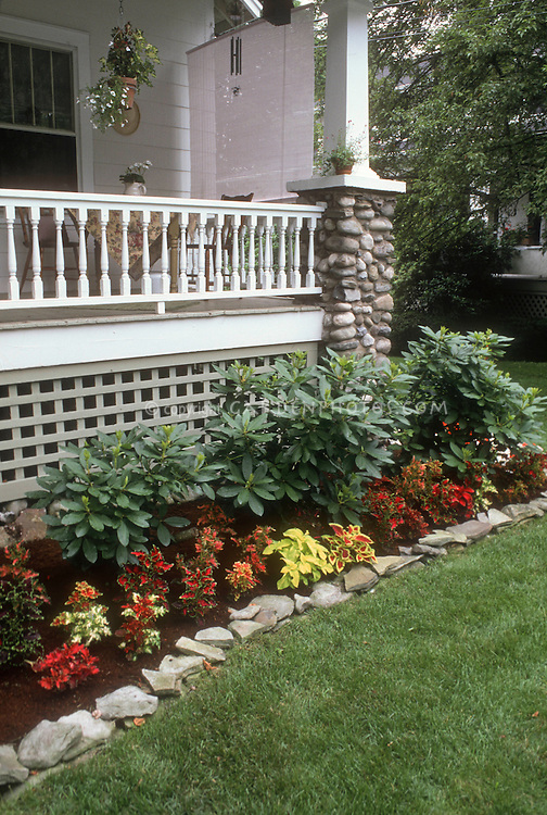 Coleus garden next to house porch and lawn plant for Plants for landscaping around house