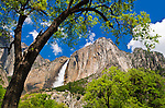 Yosemite Falls, Yosemite National Park, California USA