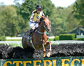 New York Turf Writers Cup Steeplechase