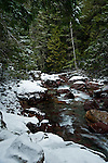 Fresh snowfall on Avalanche creek near Going-To-The-Sun-Road in Glacier National Park