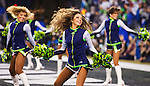 Seattle Seahawks  Seagals perform during their NFL  Championship Game against the San Francisco 49ers at CenturyLink Field in Seattle, Washington on January 19, 2014.  The Seahawks beat the 49ers 23-17 to represent the NFC in the Super Bowl.  ©2014. Jim Bryant Photo. ALL RIGHTS RESERVED.