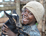 EXLUSIVE USE LICENSE GRANTED TO PCUSA THROUGH 2018. A boy cares for one of his family's goats in Matuli, Malawi.