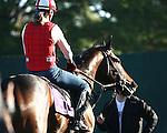Breeders' Cup Mornings 2007