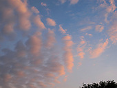 Cumulus clouds at dusk.