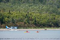 Tourists in kayaks view bears along the shore of Naknek Lake, Brooks Lodge, Katmai National Park, Alaska
