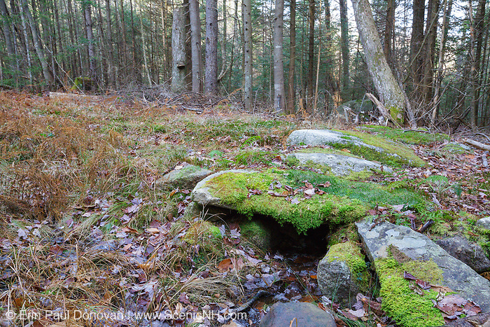 Remnants of an old stone culvert along the village road in the abandoned Peeling settlement (Mt. Cilley Settlement) in Woodstock, New Hampshire USA. History states Peeling was the original settlement of Woodstock. This village was abandoned by the 1860s (+/-). This stone culvert could have possibly been built during the Peeling era. It could also have built sometime in the 1900's when the area was logged