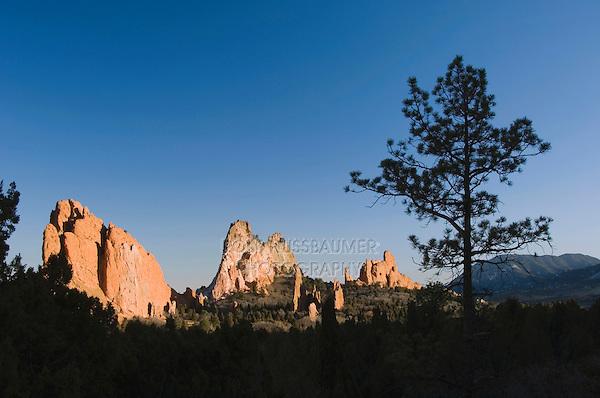 Rock formation and pine tree, Garden of The Gods National Landmark, Colorado Springs, Colorado, USA