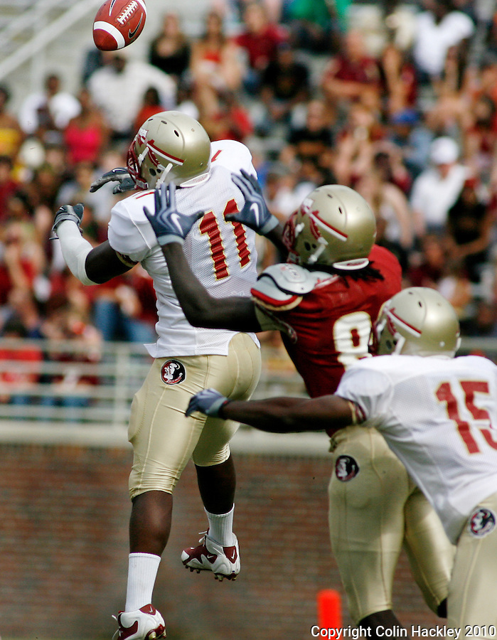 TALLAHASSEE, FL 4/10/10-FSU-SPRING FB10 CH-Golds Vince Williams knocks away a pass intended for Garnet's Willie Haulstead during first half Spring game action Saturday at Doak Campbell Stadium in Tallahassee. .COLIN HACKLEY PHOTO