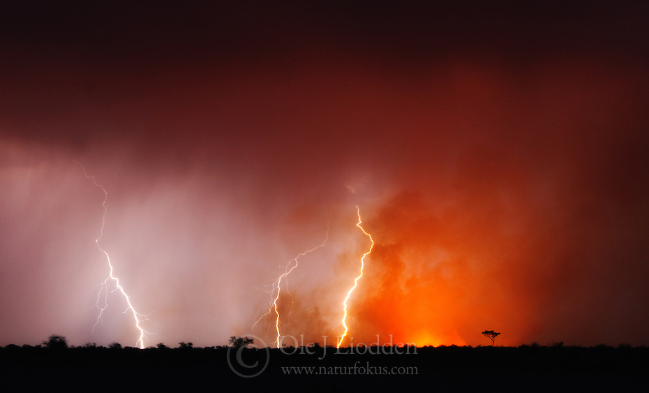 Tunderstorm and bushfire in Kalahari, Botswana