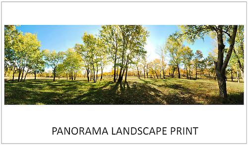 Panorama Landscape Photography Print