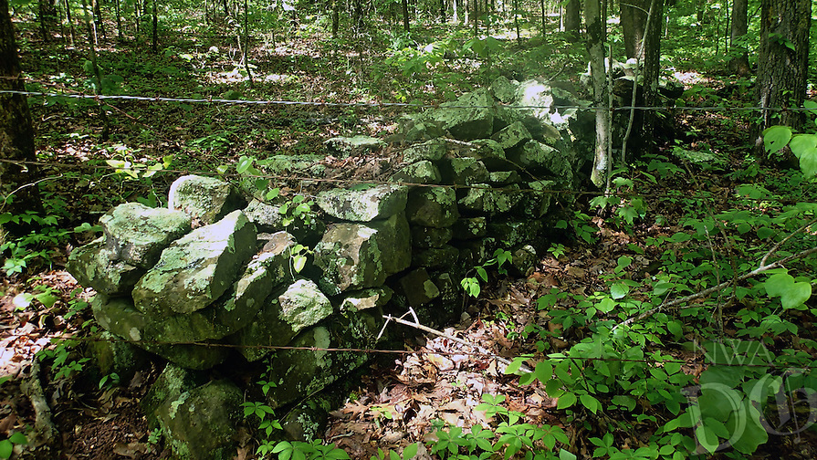 NWA Democrat-Gazette/FLIP PUTTHOFF <br /> What's left of a fence made of rock is seen April 27, 2016 along the Shepherd Springs Loop.