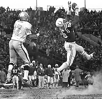 Baltimore Colts Ray May leaps to intercept pass to Oakland Raiders Raymond Chester.during the Colts -Raiders play-off game. (1971 photo by Ron Riesterer)