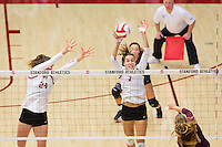STANFORD, CA - August 28, 2016: Audriana Fitzmorris, Ivana Vanjak at Maples Pavilion. The Stanford Cardinal defeated the University of Minnesota 3-1.