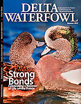 Delta Waterfowl Cover Summer 2013