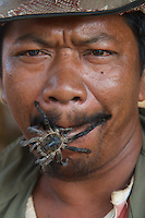 On the road the local vendors showing off the life tarantulas but fried spider is a regional delicacy in Cambodia