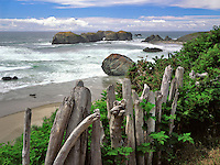 Driftwood fence overlooks Bandon Beach, Oregon Coast