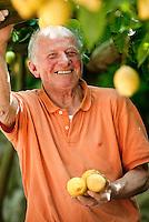Luigi Aceto, in his lemon grove 'Parco delle Zagare', Amalfi Coast, Italy.  Luigi Aceto is one of the coast's leading lemon producers.  He was the initiator to gain IGP certification for the Amalfi lemons - 'Sfusato Amalfitano'.