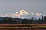 Sunset on Mount Baker (Kulshan) from Pitt Meadows, British Columbia, Canada