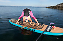 PE00299-00...WASHINGTON - Carly Hayden doing paddle board yoga in the Puget Sound at Brackett's Landing North, Edmonds.  (MR #H13)