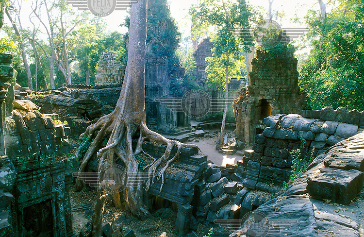 Ta Prohm, with trees growing out of its ruins and surrounded by jungle, is the only major temple of the Angkor complex left in a state similiar to when it was found by Western archaeologists, although major work was required to stabalise this former Buddhist site.
