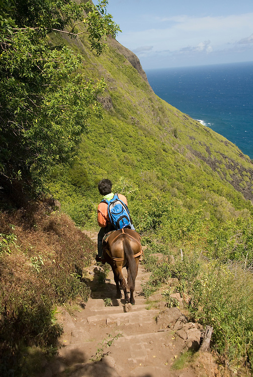 Hawaii: Molokai, the Mule Ride from the cliff tops down 1,600 feet to the leper colony at Kalaupapa. Model released..Photo himolo138-71850.Photo copyright Lee Foster, www.fostertravel.com, lee@fostertravel.com, 510-549-2202
