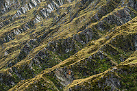 Textures of Harris mountains in Matukituki Valley, Mt. Aspiring National Park, Central Otago, World Heritage Area, South Island, New Zealand