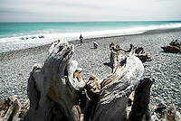 Driftwood on Gillespies Beach near Fox Glacier with people, Westland National Park, West Coast, World Heritage Area, South Westland, New Zealand