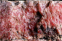 RHODOCHROSITE - Ore of MANGANESE(MnCO3)<br />