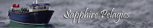 Sapphire Pelagics