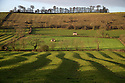 2014_12_10_TISSINGTON_FIELDS