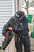 Westerville Animal Control Officer Kim Stambaugh consoles a dog retrieved from an apartment fire. the dog was uninjured in the afternoon fire although it  required a great deal of attention to calm it down after it was removed from the fire scene..