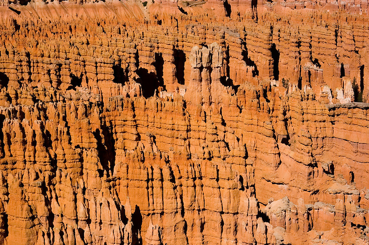 Bryce Canyon National Park, Ampitheater, Hoodoos from Bryce Point, dawn, erosion, arid, Utah, UT, Southwest America, American Southwest, US, United States, Image ut339-17506, Photo copyright: Lee Foster, www.fostertravel.com, lee@fostertravel.com, 510-549-2202