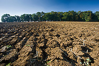 Ploughed furrows in field in Gloucestershire