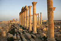 Great Colonnade and the Tetrapylon at sunset, Palmyra, Syria Picture by Manuel Cohen