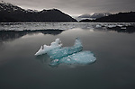 Ice floating in Prince William Sound. Alaska. U.S.A.