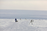 Musher Sonny Lindner heads outside of Nome during the 2008 All Alaska Sweepstakes 100 year commemorative sled dog race.