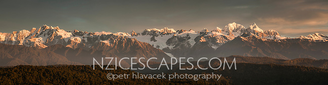 Sunset views from Okarito Trig toward Southern Alps with highest NZ mountain Mt. Cook 3754m(right) and second highest Mt. Tasman 3497m(left) on right side of frame with Franz Josef Glacier emerging on left, Westland National Park, West Coast, World Heritage Area, South Westland, New Zealand
